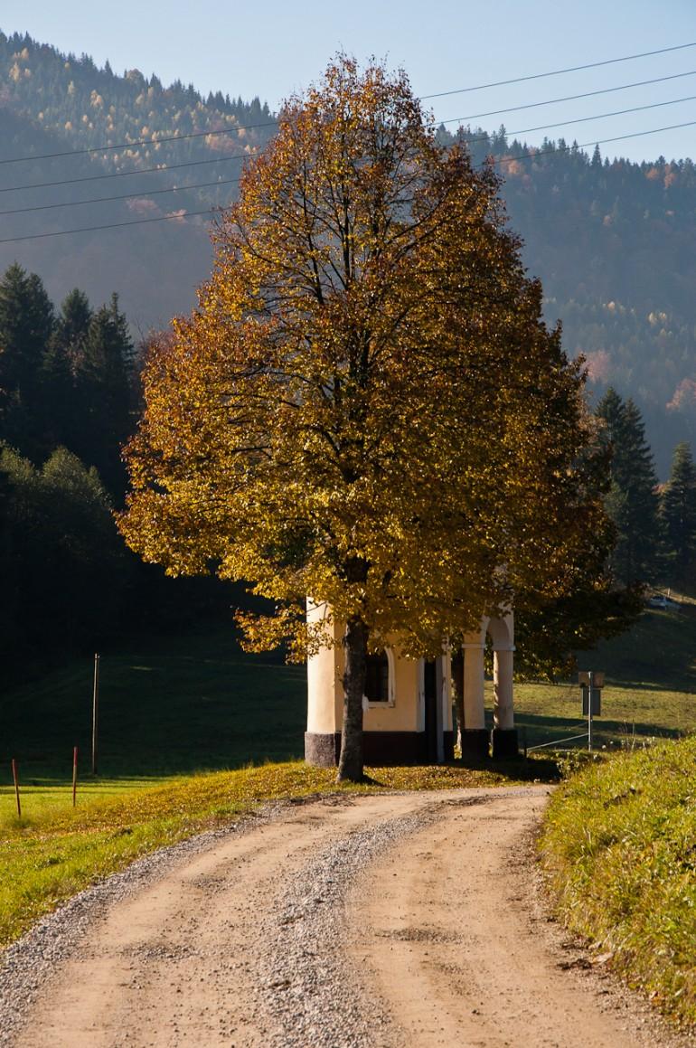 Tree and chapel
