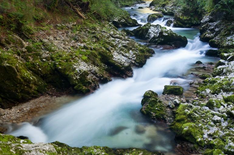 Vintgar Bled stream