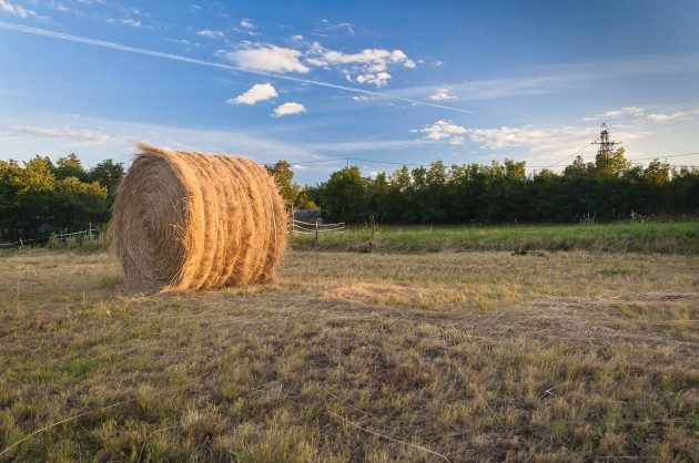 Haystack in the countryside (explored)