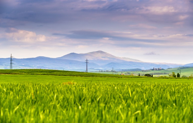 Green fields in front of Monte Amiata